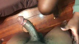 Hard pecker xxx oink orca 2